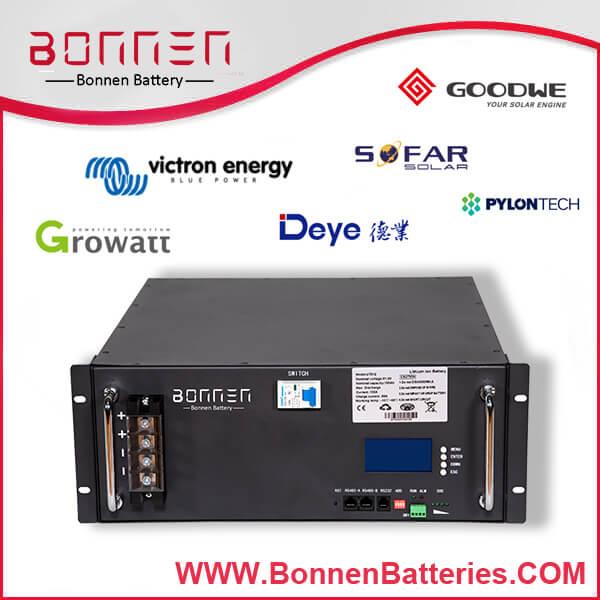 48V Lithium Ion Battery 100Ah for Solar/Home/Telecom Storage
